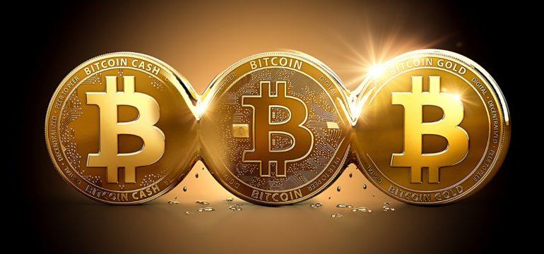 Come dichiarare i bitcoin nella dichiarazione dei redditi