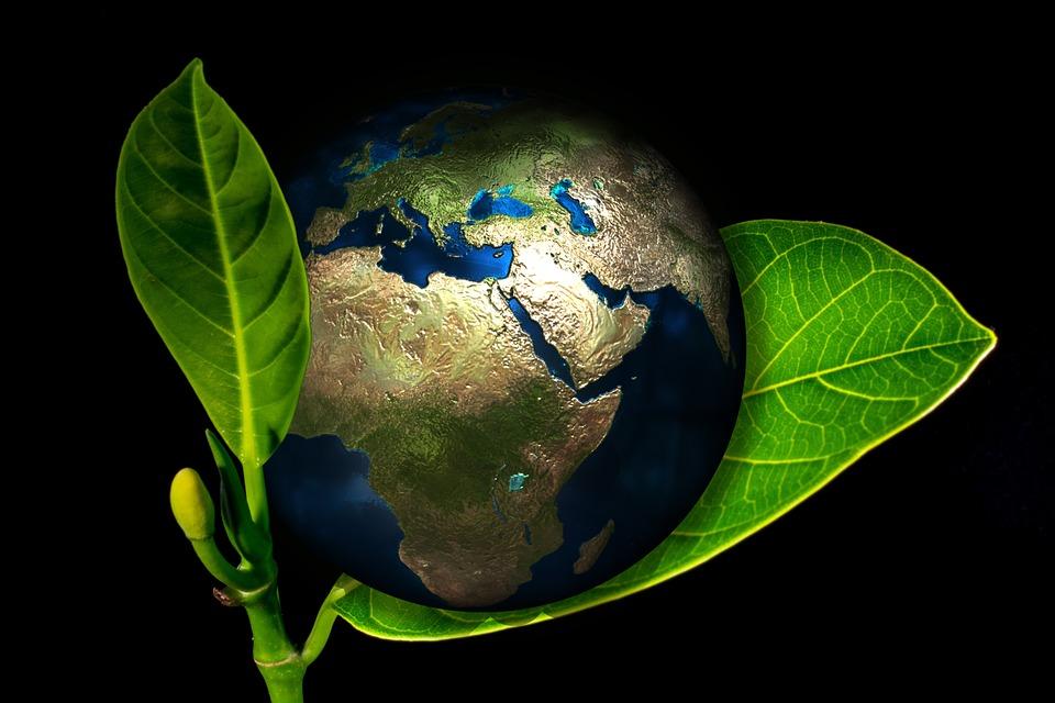 Il diritto ambientale in Italia